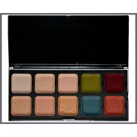Skin Tone Palette Light w/ Adjuster