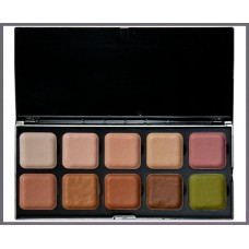 Skin Tone Palette Cover Up