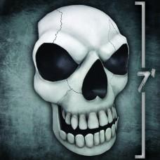 Giant Skull