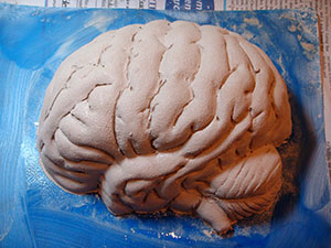 Brain Sculpt